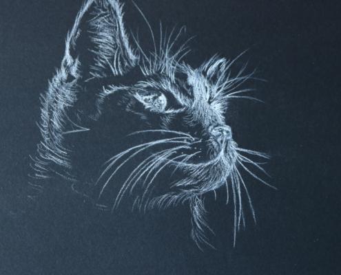 Katzenbild mit weißer Kohle