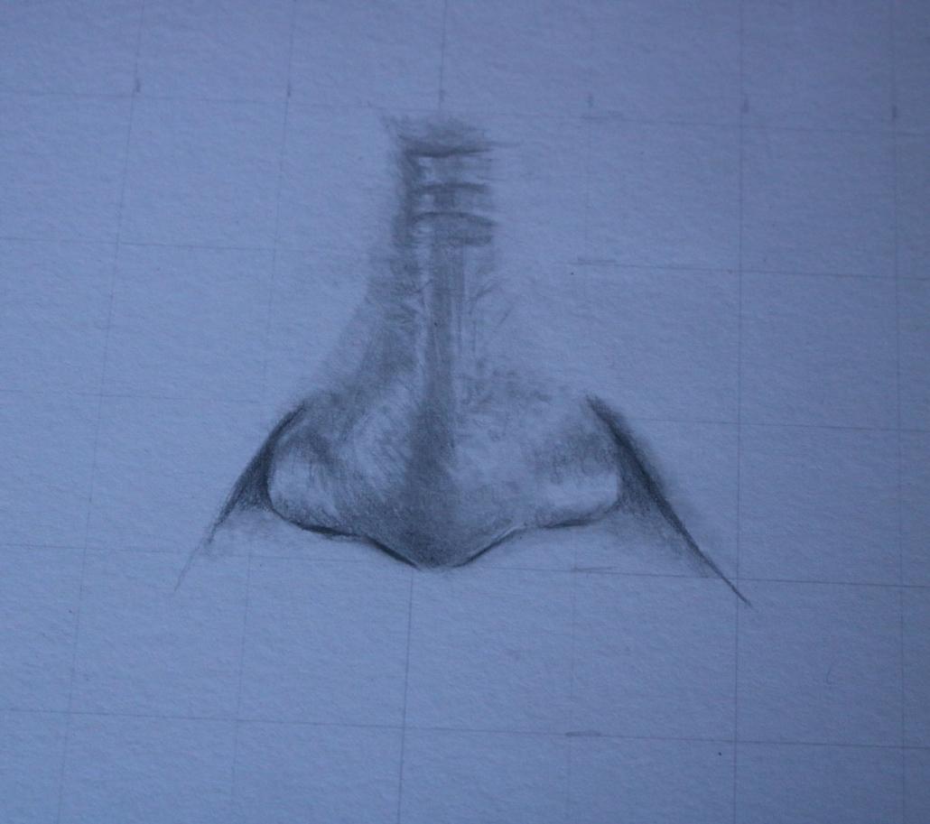 Drittes Bild der Entstehung einer Nase