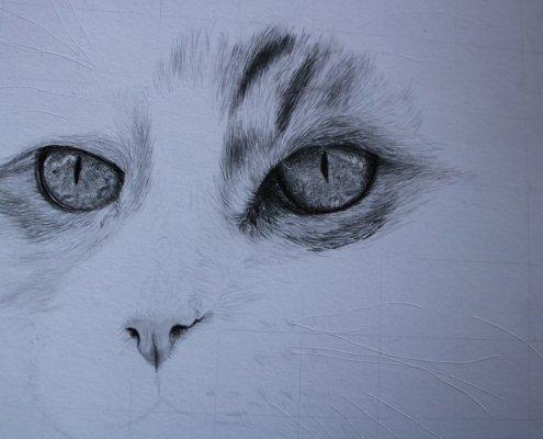 Bild zeigt die Art, wie du negativ zeichnest