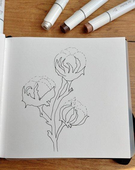 Baumwollblüte mit Finelinern
