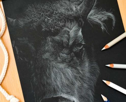 Zeichnung eines Bisons mit Polychromos
