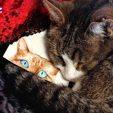 Zwei bezaubernde Katzen